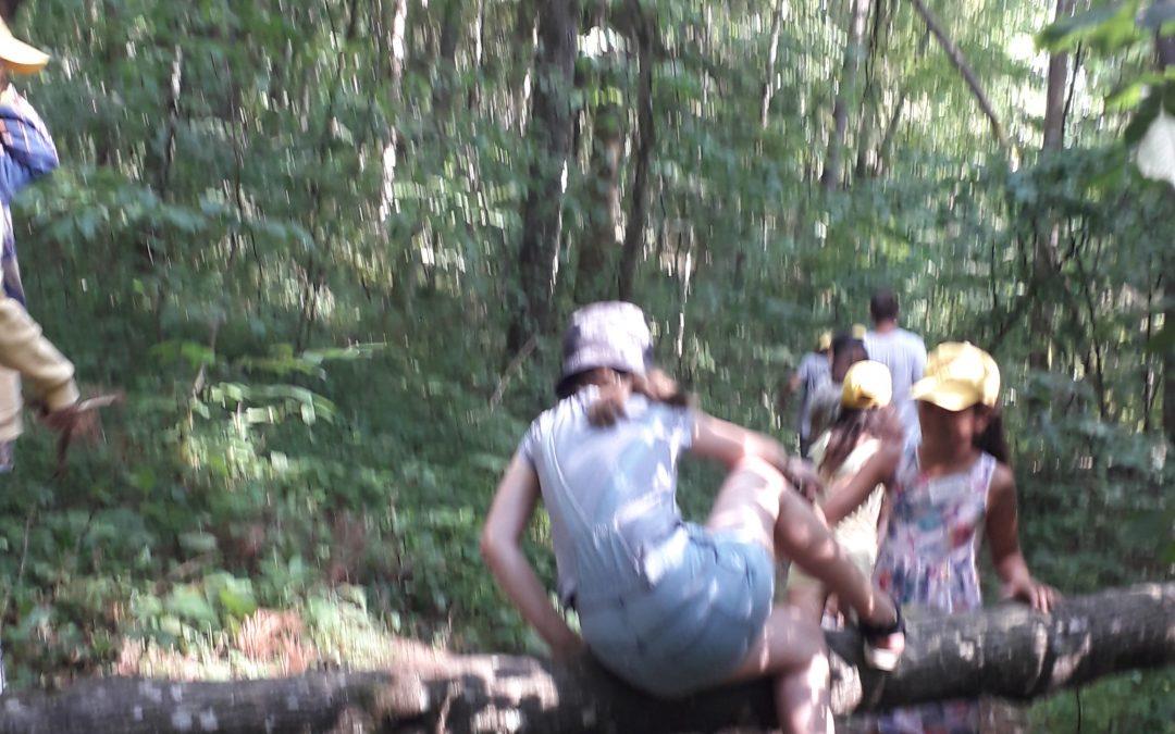 """Prasidėjo stovykla """"Gamta ir kultūra"""""""